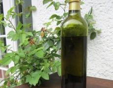 Teakholz imprägnieren mit Olivenöl